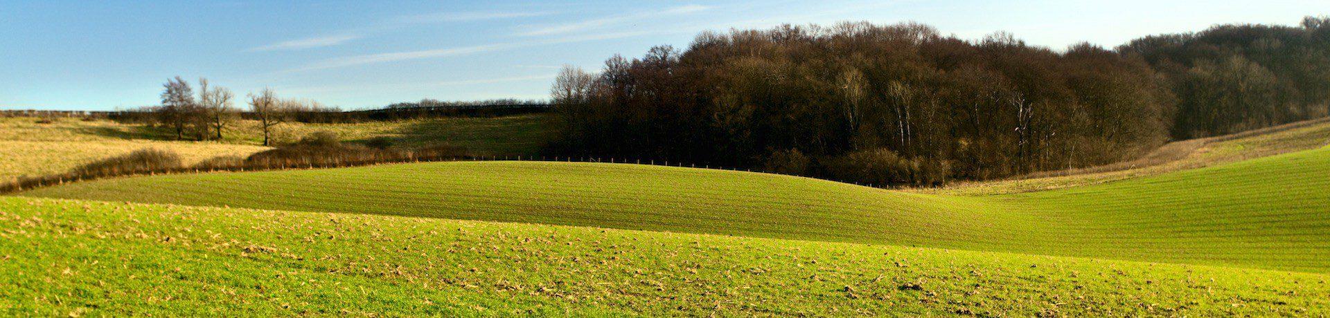 Supertrips - Belgisch Limburg