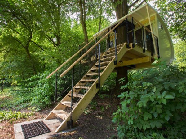Bijzondere-boomhut-overnachting-buytenplaets-suydersee10