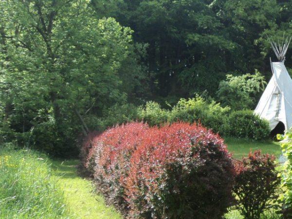 Boda: tipi en eco-huisje Ardennen