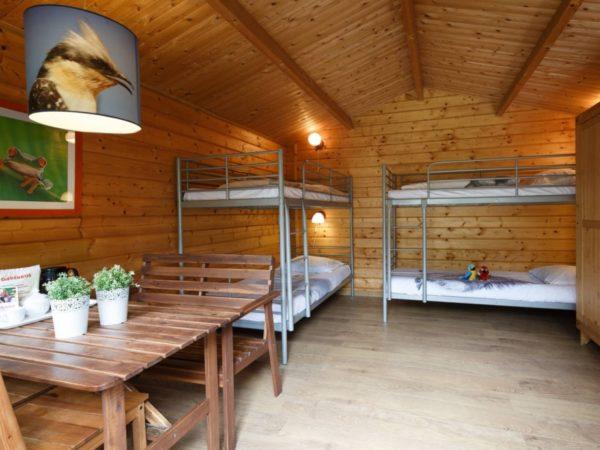 boomhutovernachting-vakantiepark-dierenbos-noord-brabant-2