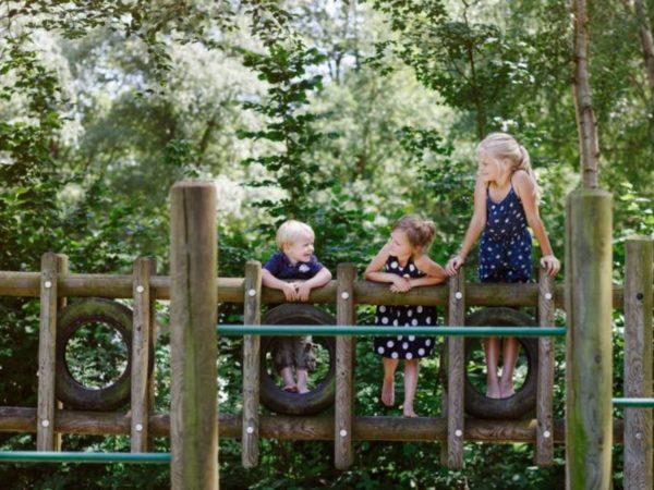 boomhutovernachting-vakantiepark-dierenbos-noord-brabant-7
