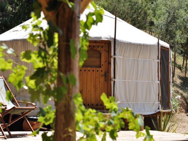cloudhouse-woodland-yurt23