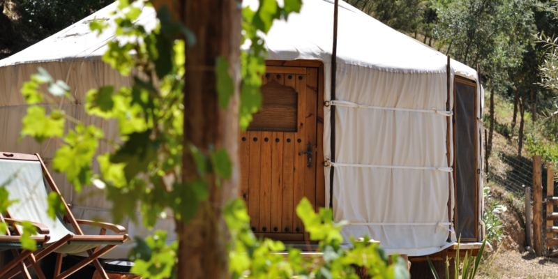 cloudhouse-woodland-yurt23