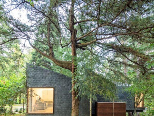 cottage-in-het-bos-cabin