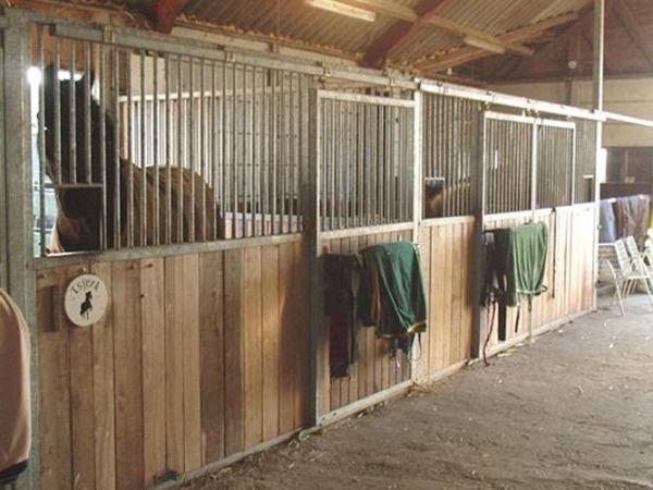 tipisch-ans-paardenstallen