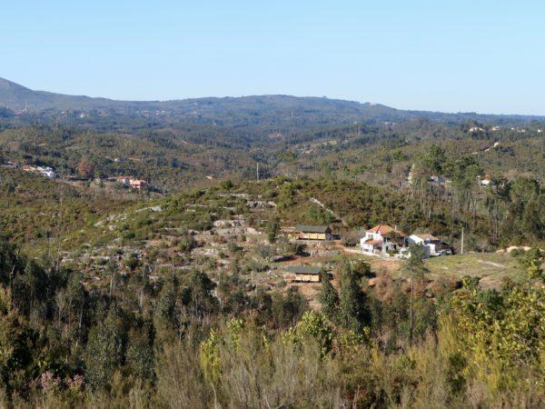 Quinta Vide Verde
