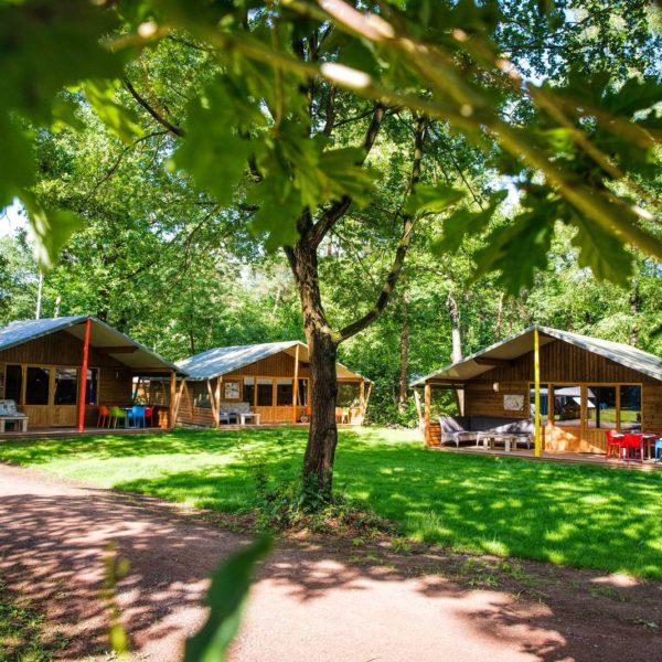 Top 10 Campings in Nederland, bekijk ze hier! Supertrips