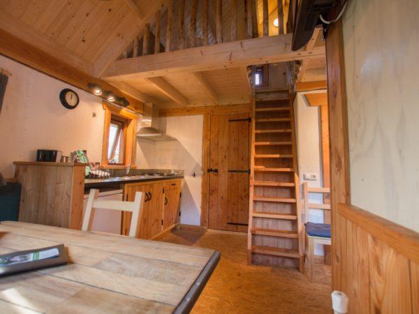 boomhut-camping-de-vossenburcht-6