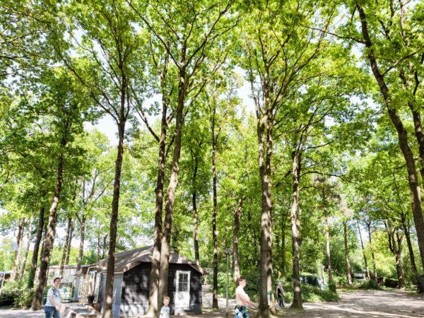camping-de-vossenburcht-5