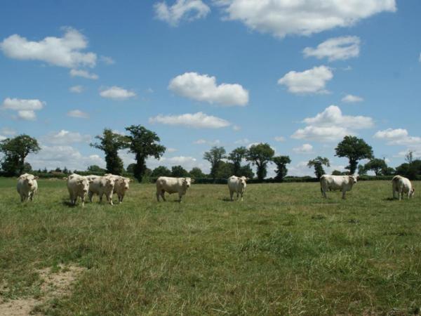 ecologisch-verblijf-frankrijk