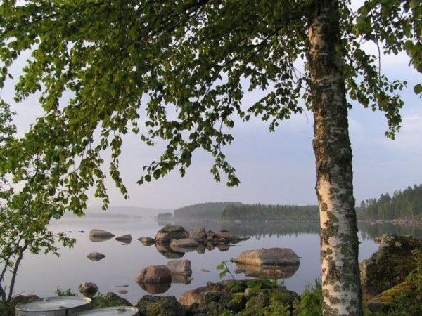 genieten-in-midden-zweden
