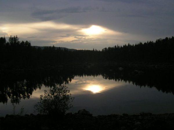 zweedse-natuur