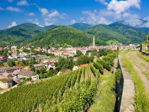 elszasser-wijnroute