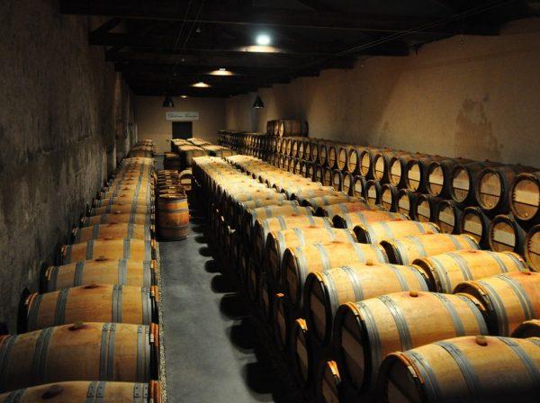 wijnreis-frankrijk-3