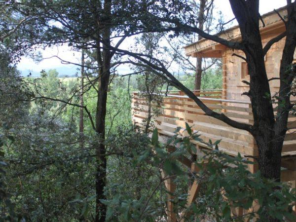 boomhut-carcasonne-frankrijk