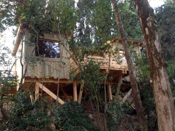 boomhut-frankrijk-overnachting