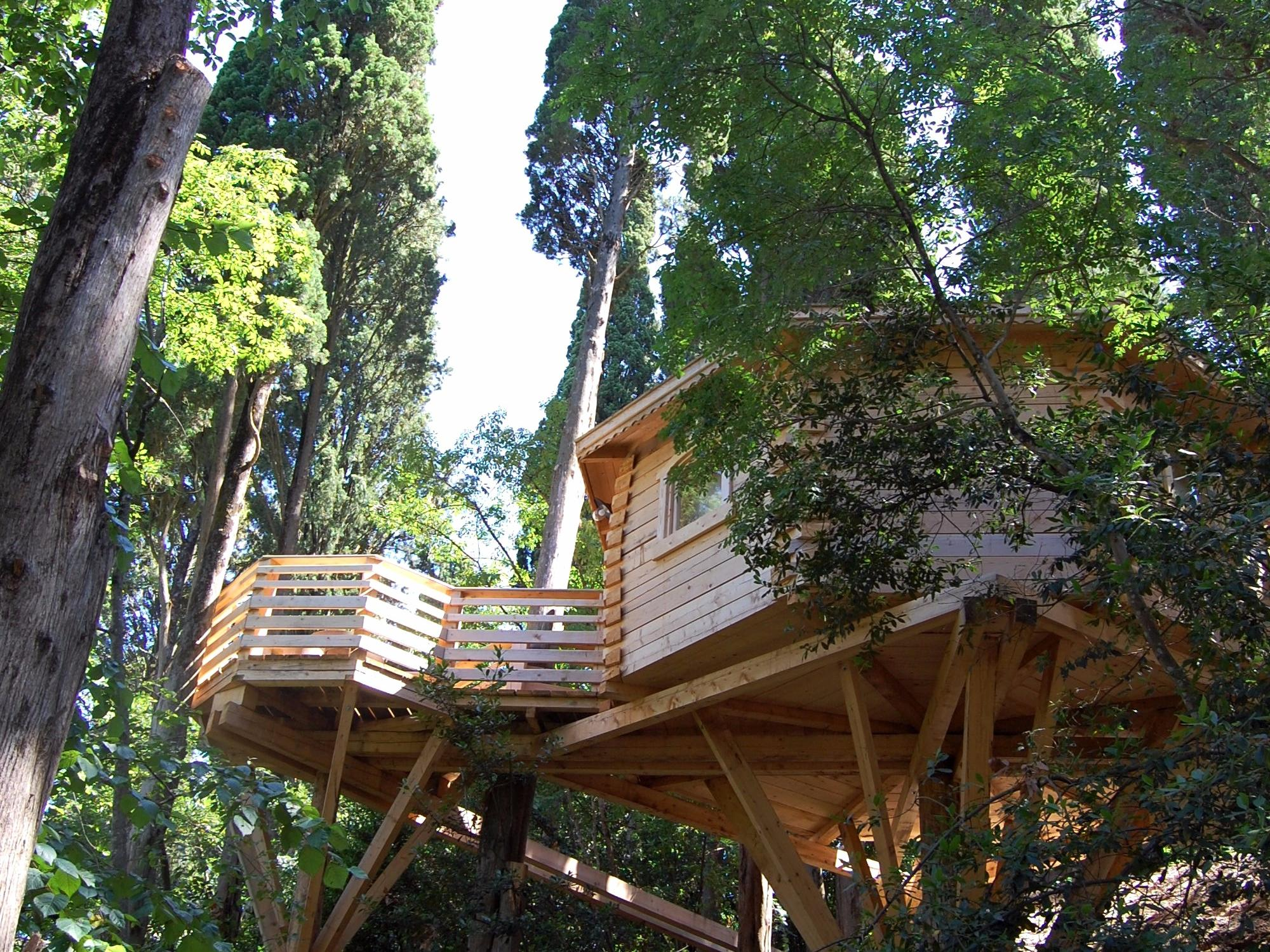 Supertrips - Les Cabanes dans les bois
