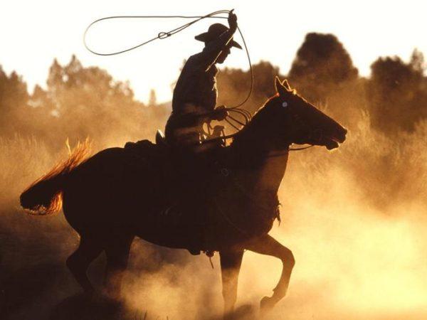 paardenshow-wild-west-Slagharen