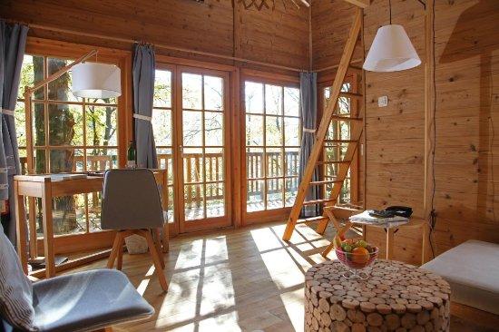 uitzicht-baumhaus-lodge