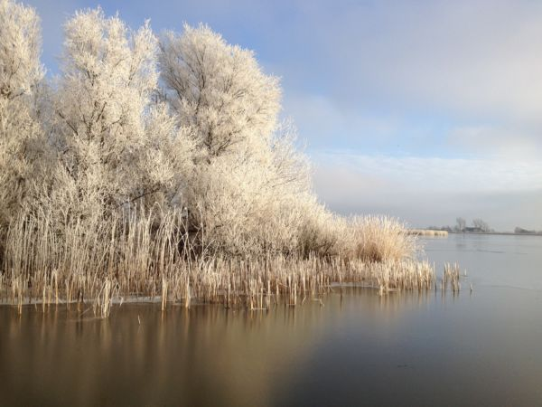 winter-pollepleats