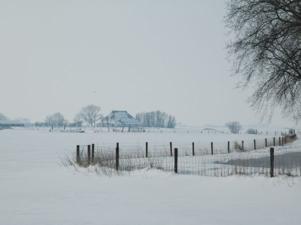 groespsaccommodatie-friesland-pollepleats