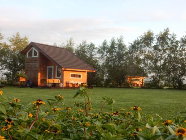 Overnachten-met-alpaca's-in-drenthe-zonneveld10