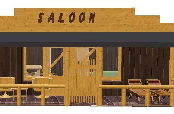 Saloon-drouwenerzand