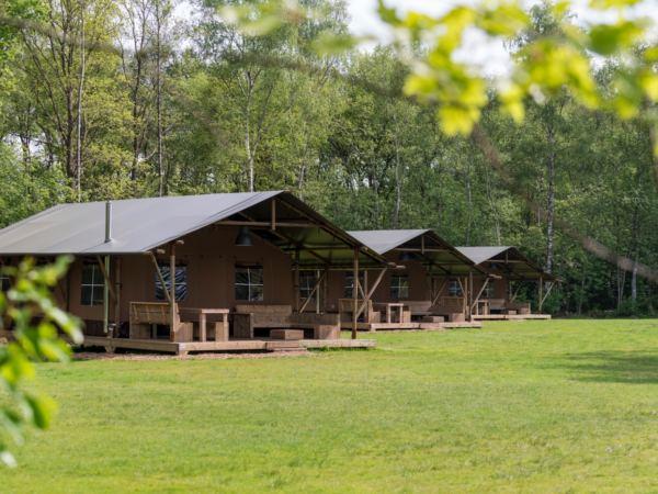 safari-farmlodge-bijzondere-overnachting-drenthe-vakantiepark-westerbergen1
