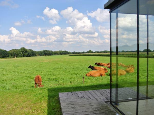 tiny-house-landschapkamer-natuurhuisje-in-Twente7