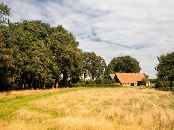 boerderij-lodge-drostes-9