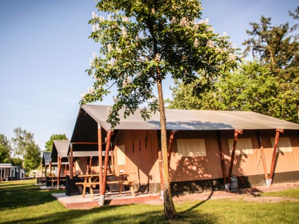 glampings-in-noord-holland-safaritent