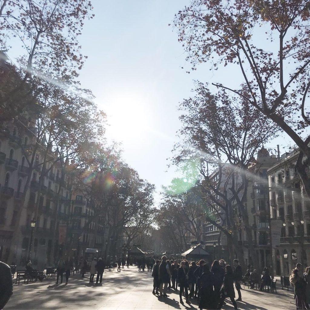 voetbalreizen-barcelona-fc-5