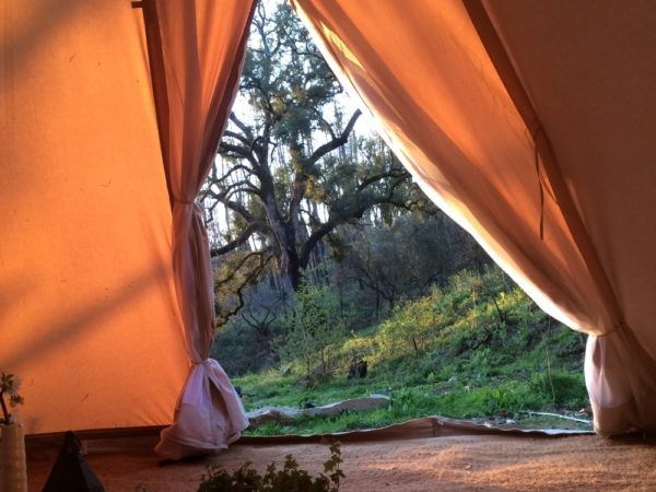 bijzonder-overnachten-in-een-tent-adega-antiga-7