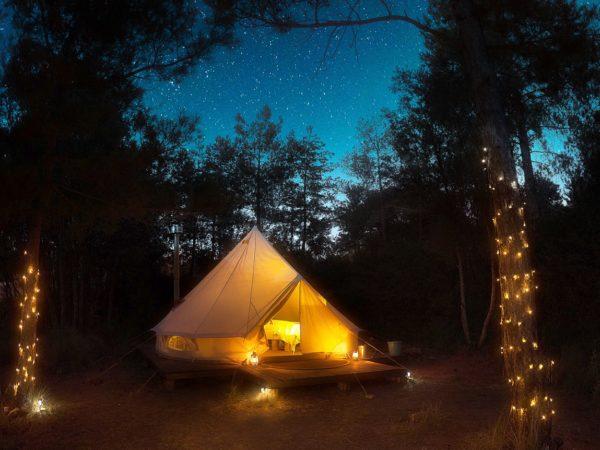 forest-days-bijzondere-overnachting-supertrips10