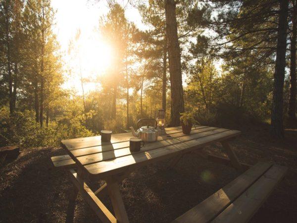 forest-days-bijzondere-overnachting-supertrips9