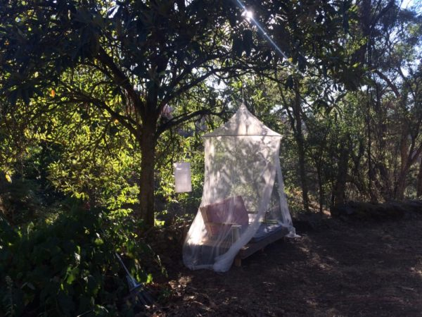 glamping-in-portugal4