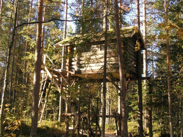 boomhut-overnachting-zweden
