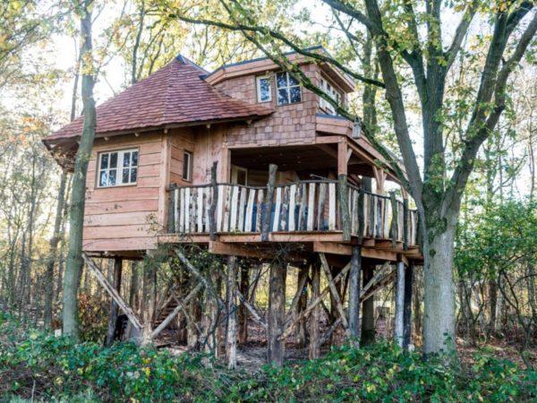 luxe-boomhut-overnachting-vakantiepark-westerbergen-drenthe