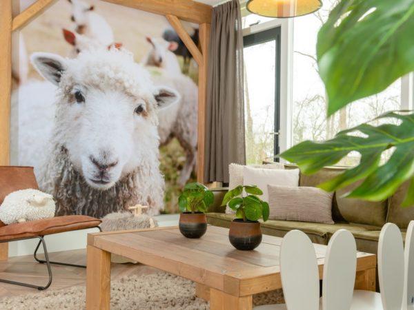 vakantie-met-kinderen-in-nederland1