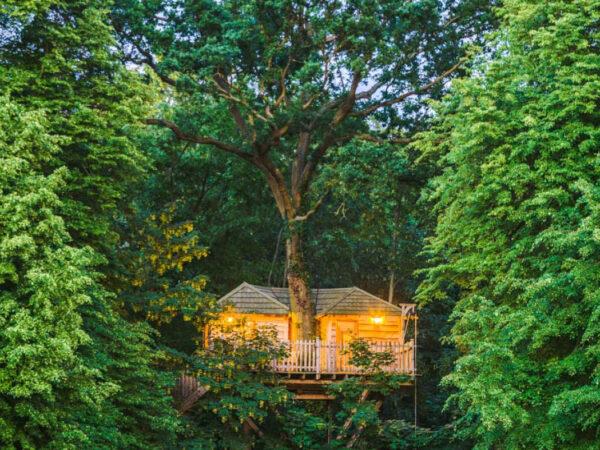 boomhut-vakantie-frankrijk
