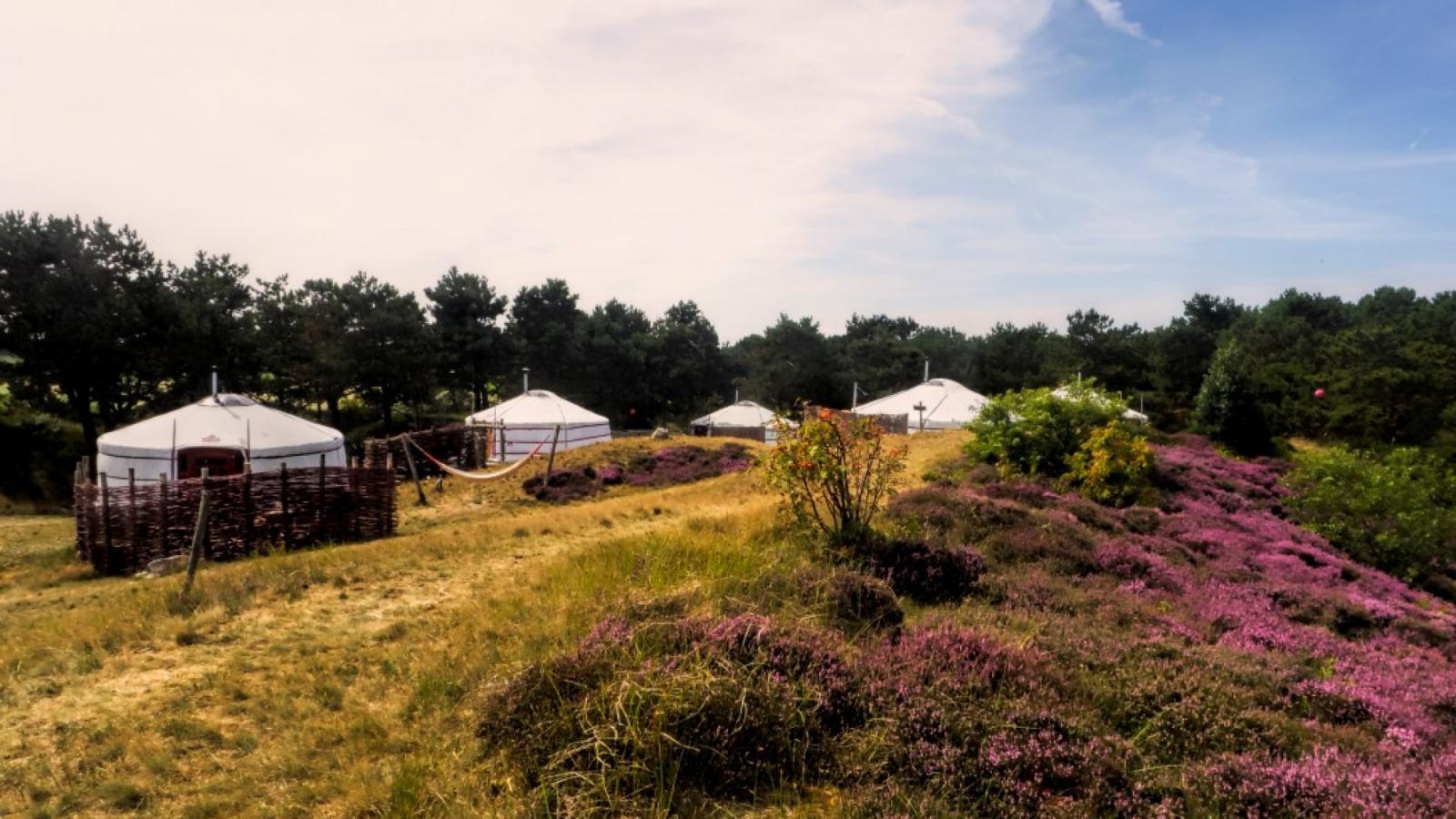 Supertrips - Bijzonder overnachten in een yurt