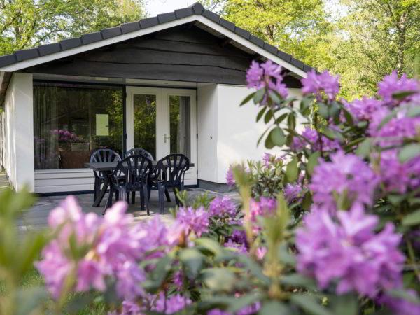bosbungalow-meidoorn-vakantiepark-westerbergen
