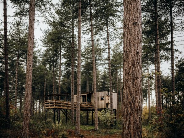 slapen-in-een-boomhut-belgie-10
