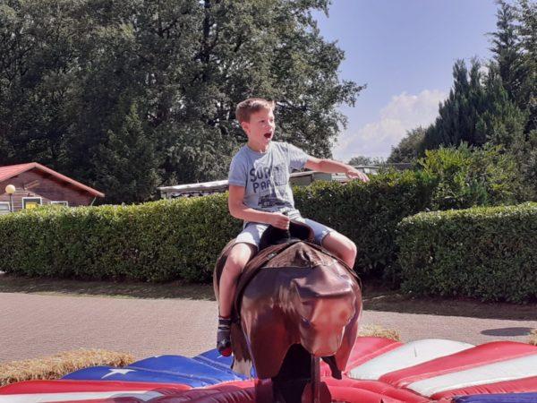 vechtvallei-camping-in-nederland-5