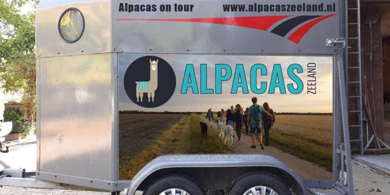 alpaca-on-wheels