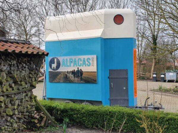 alpaca-on-wheelz-3