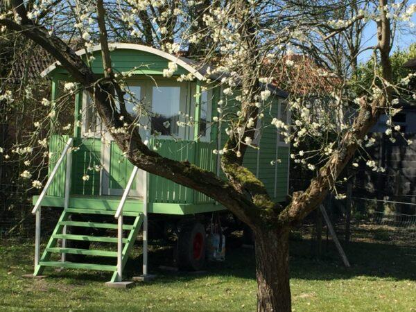 camping-het-achterhuis-3