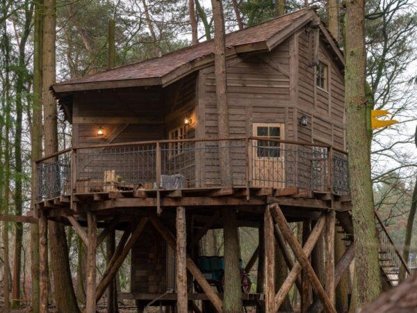 Drenthe-boomhut-nederland-bos