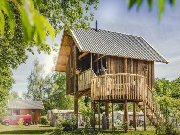 boomhut-vakantie-nederland-bomen