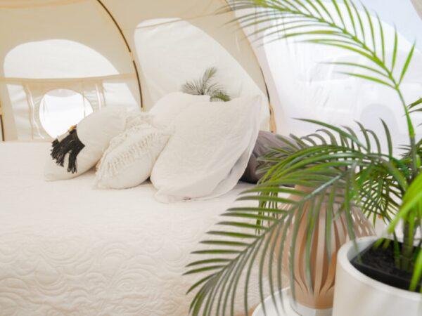 natuurhuisje-camping-tent